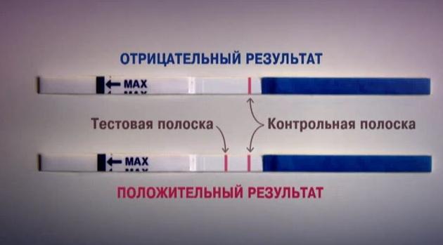 Стоит ли верить тестам на беременность